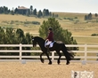 dressage in the rockies fall show 1186.jpg
