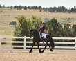 dressage in the rockies fall show 1189.jpg