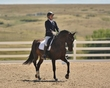 dressage in the rockies fall show 1810-51316.jpg