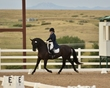 dressage in the rockies fall show 377.jpg